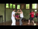 Single whip form app Teaching Moments with Sifu Adam Mizner