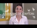 Weekly English Words with Alisha - Animals as Descriptors