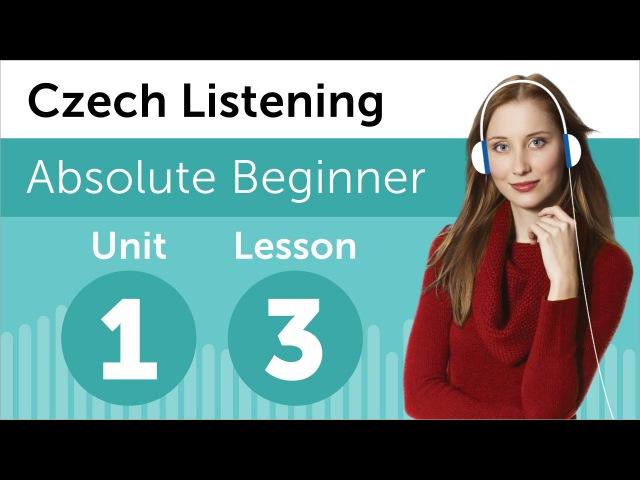 Czech Listening Practice - Calling the Czech Doctor's Office