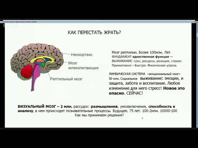 Психология пищевого поведения Ярослав Брин Похудеть Удержать результат