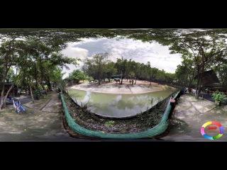 360° Video 4K: Dai Nam Zoo - Vườn Thú Đại Nam
