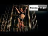 Kat Deluna Feat. DJ Yass Carter - Wild Girl (Official Video)