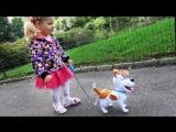 ✿ Идем в МАДАГАСКАР Влог Тайная Жизнь Домашних Животных Max secret life of Pets Америка Vlog