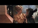Ослинная шкура. 1982. (СССР, фильм сказка, фэнтези, мелодрама, комедия)