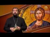 Евангелие дня - Свинья на небо не смотрит