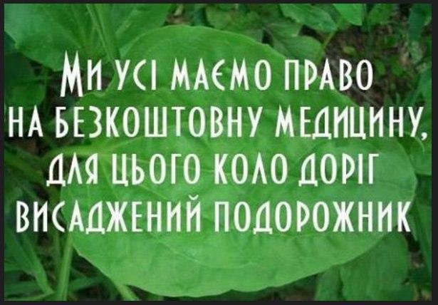 https://pp.vk.me/c637627/v637627607/a078/bAojZV_3eJE.jpg
