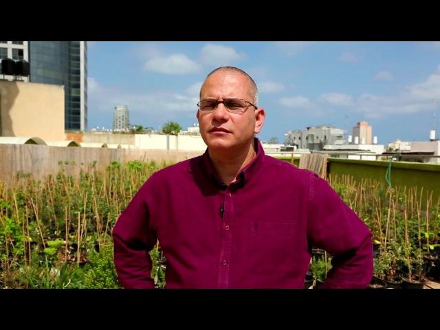 Городская ферма на крыше в Тель-Авиве производит 10000 голов салата каждый месяц
