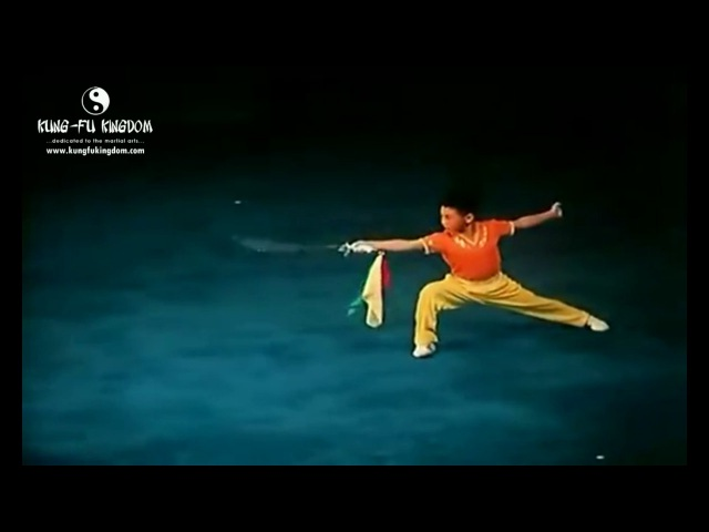 8 Year Old Jet Li Daoshu (Broadsword)