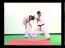 Базовая техника самозащиты для 2 дана Хапкидо Джин Джун Кван