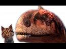 Наука для детей Динозавры Майюнгазавр Семен Ученый