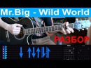 Mr Big - Wild world Guitar tutorial