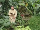 сад божественных песен, псалом 102