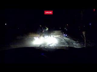 Несколько экипажей ДПС устроили погоню за пьяной автоледи под Волгоградом