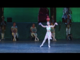 Танец Ману из балета Л.Минкуса