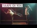 Shape of You Ed Sheeran Violin Viola Loop Cover ft ThatViolaKid