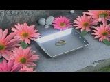 [1080/60fps Full] Starduster -Hatsune Miku 初音ミク English Romaji Project DIVA FT