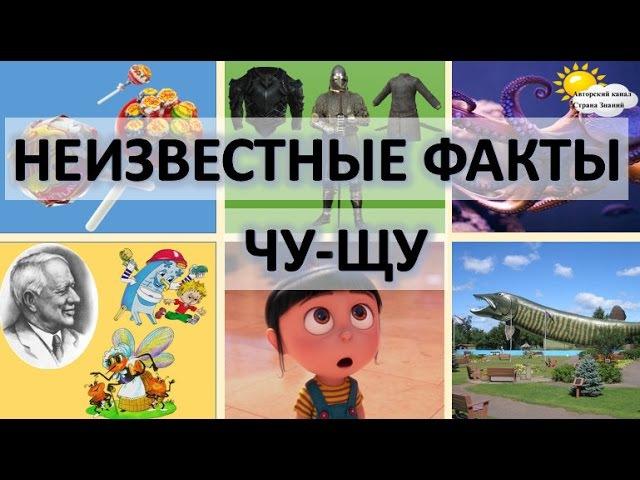 Секреты грамотного письма. Правописание ЧУ-ЩУ.