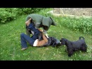 Последняя битва. Часть Вторая. 20. 05. 2012