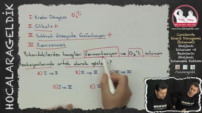Canlılarda Enerji Dönüşümü - Solunum - Oksijenli Solunum -3 (Besinlerin Oksijenli Solunuma Katılımı)