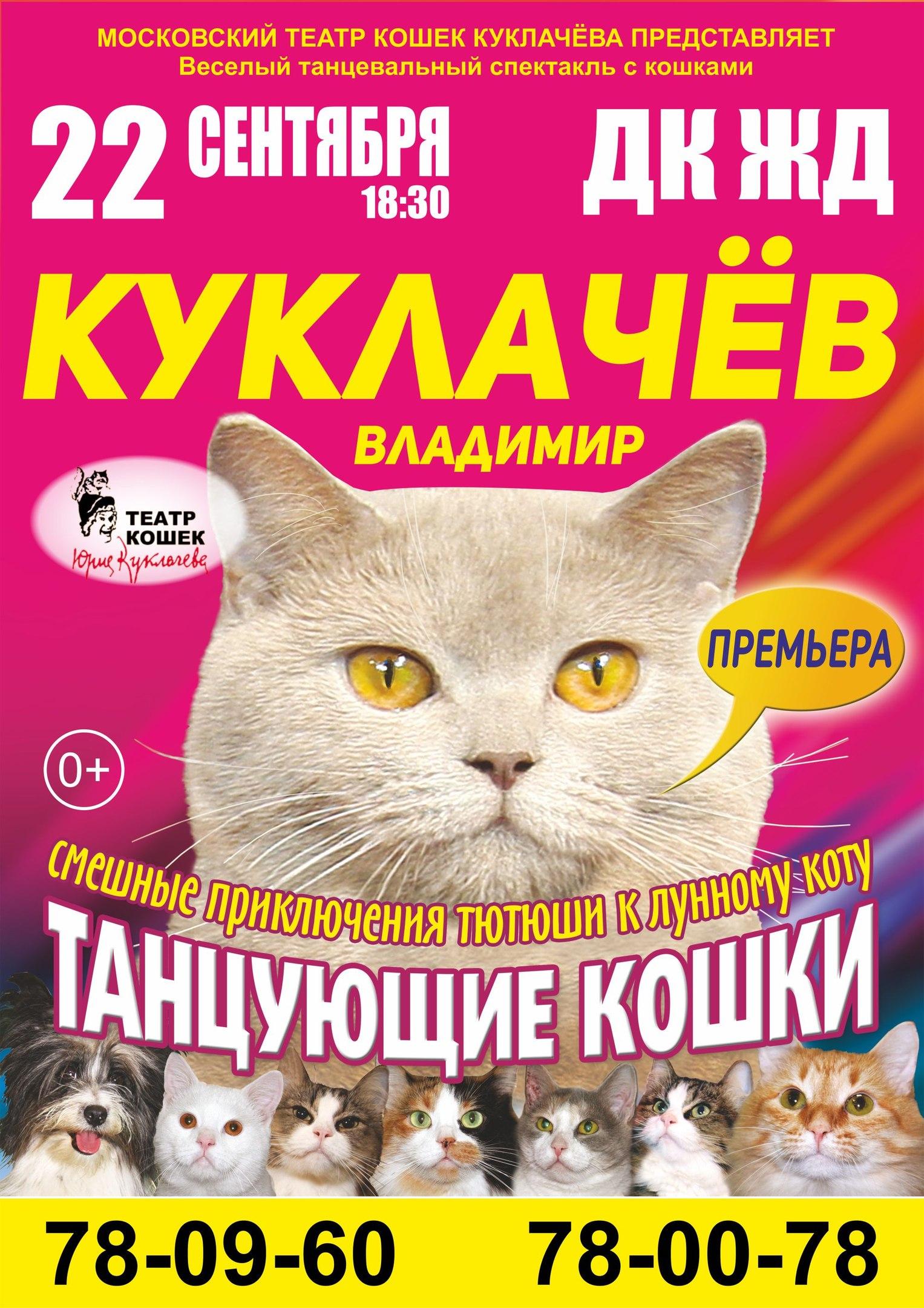 Владимир Куклачев «Танцующие кошки»