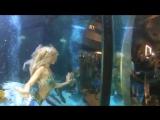 Hannah Fraser a mermaid in Cannes