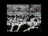 «Борьба за выживание – Волк. Испанский изгнанник» (Документальный, животные, 1994)