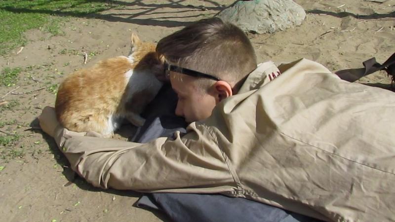 Кролик Блэк играется с котиком