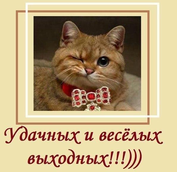 https://pp.vk.me/c637629/v637629892/15c39/parkhgcXlm8.jpg