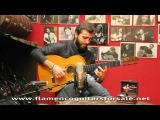 Jesús Guerrero plays the Manuel Reyes 1990 flamenco guitar for sale
