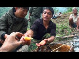 Hallucinogen Honey Hunters - Hunting mad honey - documentary
