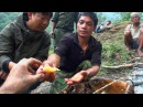 Hallucinogen Honey Hunters Hunting mad honey documentary