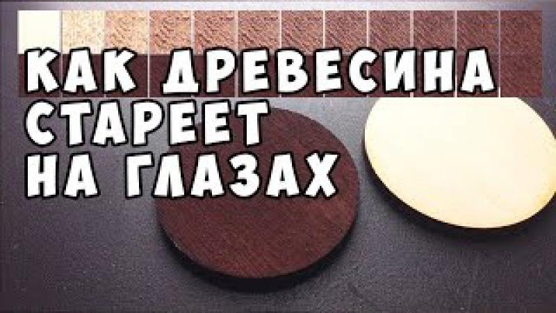 Как стареет древесина от морилки (уксус и железо) DIY Wood Stain (vinegar iron) in life action