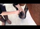 Carr Day Martin Cornucrescine Tea Tree Hoof Oil