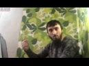 Сколько стоит жизнь чеченца в России!