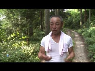 Вершины мира 19 серия из 20. Япония. Мияма / Les Montagnes du Monde (2010) HD 720p