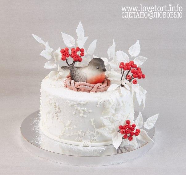 Зимний тортик со снегирем cake