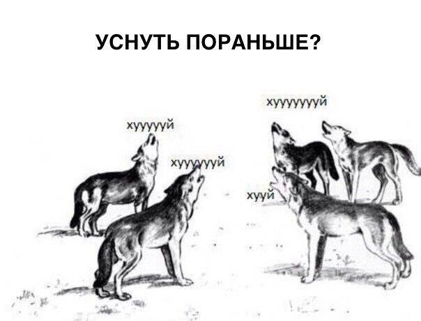 https://pp.vk.me/c637630/v637630782/16616/hoqn6QOYXUU.jpg