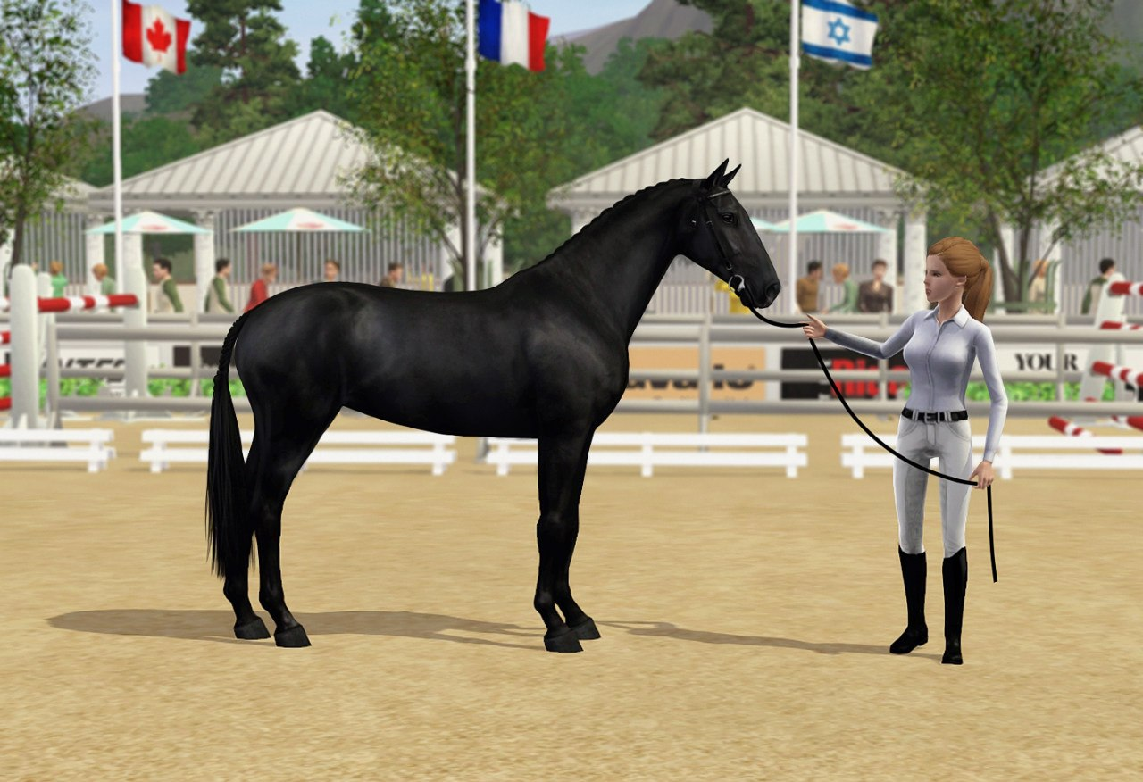 Регистрация лошадей в RHF 2 I367-U1OCNo