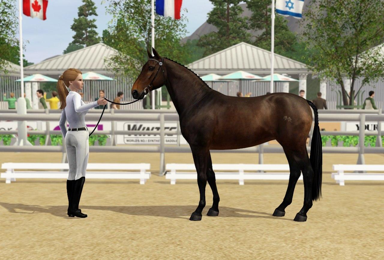 Регистрация лошадей в RHF 2 C1RK0PYhjOk