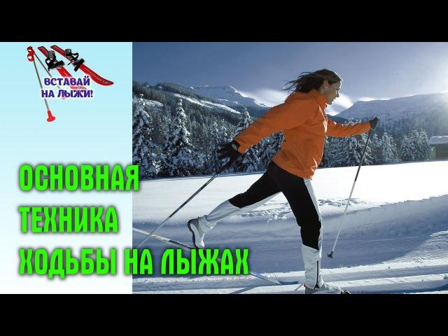 Стойка лыжника и основная техника ходьбы на лыжах