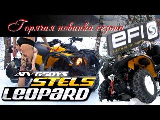 Горячая новинка: Стелс Леопард 650 с инжектором! Стоит ли переплачивать за EFI 30 000 р...