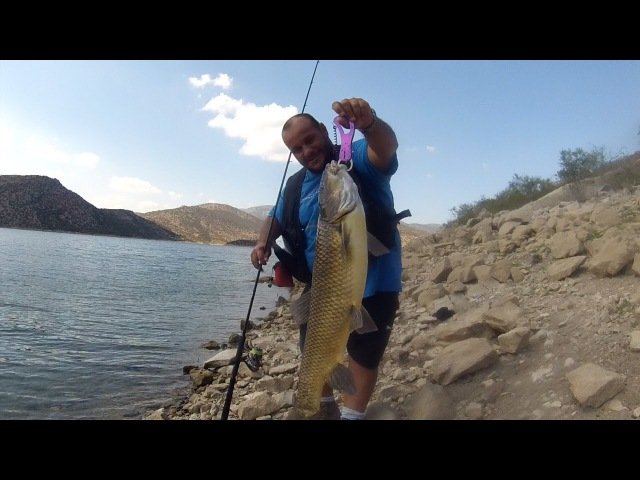 Fishing With DUO 72: Massive barbel on Realis Spinbait 80 by Markos Vidalis.