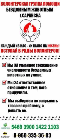 Справка для перевозки животных Нижегородский район Справка об окружении Чечёрский проезд
