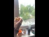 пердолим помидоры