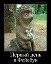 Елена Савельева фото #15