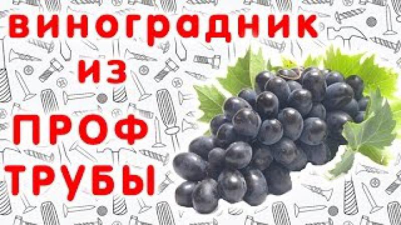 Двухплоскостная шпалера для винограда своими руками. Виноградник из металлических труб.