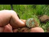 Монеты на заливных лугах (часть 2).В поисках старины #18