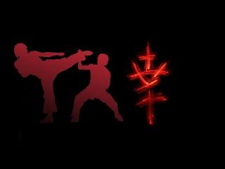 Мотивация - Каратэ, книг боксинг ,тхэквондо, ниндзюцу,винг чунь