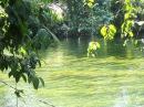 Экспедиция на реку Бехос. Западная часть острова Новая Гвинея