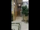 170715 Холл клиники